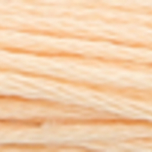 ultra very light citrus orange colour in six strand cotton floss, like apricot flesh.