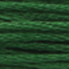 A close-up view of embroidery thread skeins, held taught horizontally. The shade is a very dark medium forest green colour in six strand cotton floss, like a spruce bough.