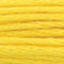 A close-up view of embroidery thread skeins, held taught horizontally. The shade is a medium lemon yellow colour in six strand cotton floss, like a canary songbird